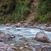 Himalayian Stream of Life
