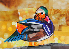 Mandarin Duck (Megan Coyle) Tags: mandarinduck duck duckart duckcollage quack bird birdportrait birdcollage birdart colorful collageart collage paperart papercollage magazinecollage illustration cutandpaste paintingwithpaper megancoyle