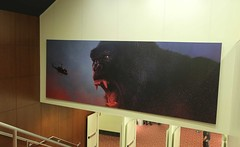 Entertainment, Kong:  Skull Island, Wall Graphic