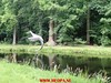 """2017-06-10         Baarn 36 Km  (128) • <a style=""""font-size:0.8em;"""" href=""""http://www.flickr.com/photos/118469228@N03/34413247423/"""" target=""""_blank"""">View on Flickr</a>"""