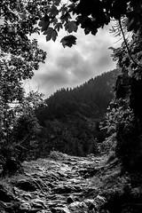 LANDSCAPE_BW_01 (marcopedrini) Tags: blackwhite biancoenero landscape paesaggi conca prà val pellice fujifilm xpro1 xf23 mountain montagna piedmont piemonte lightroom5