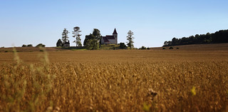 Catholic Church of Saints Cosmas and Damian lovely situated in the wheat fields of Slovakia