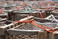 Lobsters beware (halifaxlight) Tags: canada novascotia aspotoganpeninsula northwestcove lobstertraps traps fishing ropes orange blue bokeh