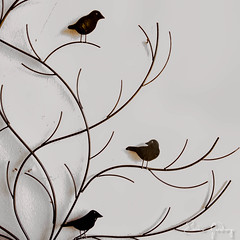 Tree & Birds # 1 (Enio Godoy - www.picturecumlux.com.br) Tags: mobileart celular mobilephotography birds samsunggalaxy photomobile cellularphone viveza23011283341005 mobilephone phone tree galaxys8 niksoftware samsunggalaxys8 mobile 112017junho24gustavklimt samsungs8 minimalism mobgrafia samsung