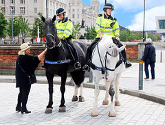 MOUNTED POLICE 2 (tommypatto : ~ IMAGINE.) Tags: liverpool horses police