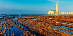 5 Days Tour From Casablanca To Fes (visitarmarrocos) Tags: viagem marrocos pacotes o que fazer em casablanca pontos turisticos excursões roteiros