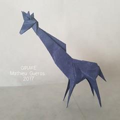 ORIGAMI GIRAFFE (Mathieu Gueros Origami) Tags: giraffe girafe origamigiraffe origamigirafe mathieuguerosorigami mathieugueros origami