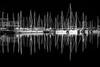 Il suono degli alberi (TS) (Ondablv) Tags: bianco nero bn black white trieste mare sea riflettere riflessioni ondablv night riflessi notte porto franco nuoco alberi barche vela vento