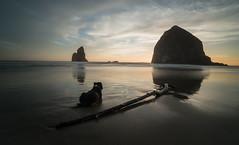 Haystack Rock (Justin Knott) Tags: nikon d800 haystack rock cannon beach oregon coast dogs sand long exposure nd filter