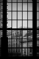 ...windowwalking... (*ines_maria) Tags: window monochrome architecture architektur station glass abstract urbanart urban city building blackandwhite construction square dog woman walking street streetphotography