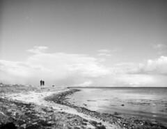 Walking the Dog (LarsHolte) Tags: pentax 645 pentax645 645n 6x45 smcpentaxfa 45mm f28 120 film 120film rollei rolleirpx rolleirpx100 100iso mediumformat analog analogue blackandwhite classicblackwhite bw monochrome filmforever ishootfilm filmphotography xtol jobo autolab atl1500 homeprocessing larsholte beach denmark danmark nivå nivåstrand groyne dof