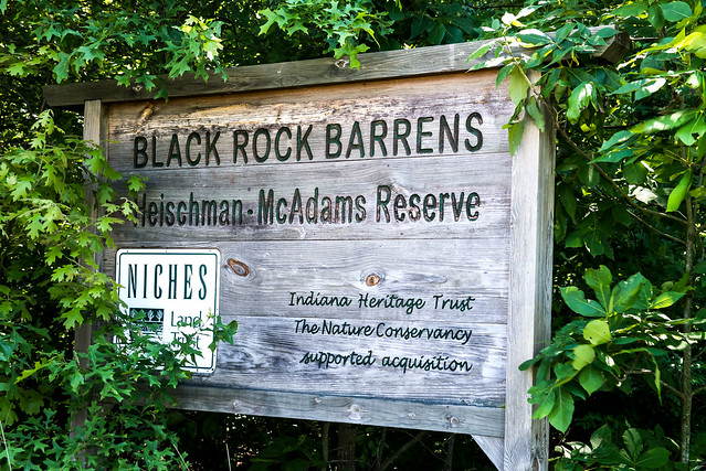 Black Rock Barrens Nature Preserve - May 29, 2017