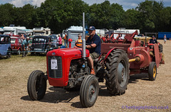 IMG_0169_Woodcote Rally 2017_0214 (GRAHAM CHRIMES) Tags: woodcote rally 2017 steam woodcoterally2017 woodcotesteamrally2017 woodcoterally transport traction tractionengine tractionenginerally steamrally steamfair showground steamengine show steamenginerally vintage vehicle vehicles vintagevehiclerally vintageshow heritage historic classic country commercial preservation wwwheritagephotoscouk restoration woodcotesteam masseyferguson 35 tractor 1961 568uyj