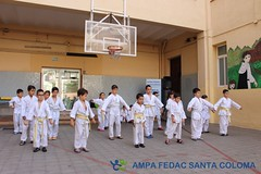 Exhibició Karate-do Shotokan