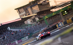 Ford at Ford (Raph/D) Tags: 24heuresdumans lemans24hours 2017 race car racing racer canon eos 7d mark ii canoneos7dmarkii l series lseries ef70200mmf28lusm ef2470mmf28liiusm catchy colors panning shot filé vitesse speed motion motorsport performance aco fia wec circuit sarthe track piste prototype proto lmp1 lmp2 gte am pro driver pilote sport auto fast competition lm lm24 lemans