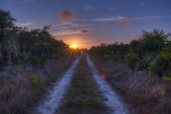 Bahamas Long Island (Bugtris) Tags: sunrise hdr longisland bahamas canon strasse 5dmkiii landschaft