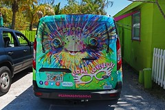 Scribbles (Michiale Schneider) Tags: scribbles matlacha florida vehicle leomalovegrove greatartist colorful van michialeschneiderphotography metal