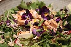 Salad with Viola and Goat Feta (meg williams2009) Tags: greenmarket unionsquaregreenmarket salad food dinner edibleflowers feta goatfeta lettuce beansprouts newyork