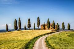 Toskana_MG_8481 (Svenja Kalus) Tags: toskana landschaft tuscany landscape house haus gelb grün blau sommer summer yellow green blue trees bäume zypressen cypress