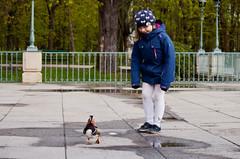 run, Forest, run! (Barbara.K) Tags: mandarinduck danger kid candid nature bird canonrebelt1i canonefs55250mm alienskinexposure canon500d