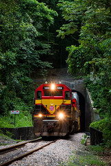 Miraflores Tunnel (Wheelnrail) Tags: pcrc panama canal railway railroad train trains locomotive rail road emd sd402 jungle tunnel rails miraflores