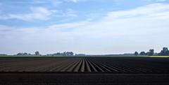 Agricultural symmetry (Wouter de Bruijn) Tags: fujifilm xt1 fujinonxf35mmf14r landscape nature agriculture symmetry flat nieuwland walcheren zeeland nederland netherlands holland dutch sky clouds bluesky farm farming farmer empty