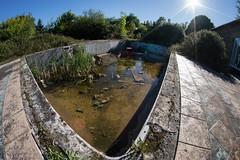 Château de la Poupelière (Kilian ALL) Tags: chateaudelapoupelière chateau poupelière normandie normandy piscine pool roseaux reed abandoned abandonné urbex