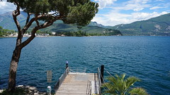 DSC00990 (ana_ness) Tags: garda lake italy spring may sea waves tree pier bridge pine summer mountains alps