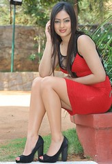 Indian Actress NIKESHA PATEL Hot Sexy Images Set-1 (6)