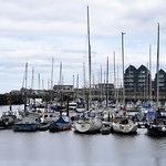 The harbour at Amble thumbnail