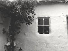 Hayat, olması gerektiği gibi değildir, olduğu gibidir. Onu değiştiren yaşama biçiminizdir. Virginia Star  Günaydın mutlu günler ☺☺   #photography #afyonkarahisar #cay #gocen #villagehouse #window #mycamera #travel #effect #bnw #blackandwhite #freeart #fre (mrbrooks2016) Tags: blackandwhite freeart effect instalike window afyonkarahisar likeforlike photography objektifimden mycamera bnw gocen freeartist instaart instaartist instagood instagram like4like kadraj likeforfollow objektif villagehouse travel cay
