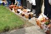 IMG_7753 (kolozsvari.laszlo) Tags: tiszaújlak kárpátalja húsvét