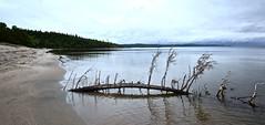 SANDY BEACH, ONTARIO, CANADA near WAWA ONTARIO, CANADA, ACA PHOTO (alexanderrmarkovic) Tags: sandybeach ontario canadanearwawaontario canada acaphoto