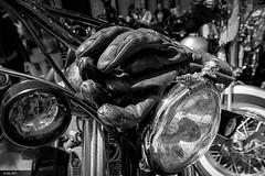 Harley Davidson Km. 0 (nieves.valderrama) Tags: blancoynegro calavera guantes harley harleydavidson makinostra moto motocicleta blackandwhite bnw bw gloves liveyourlegend monochrome motorbike motorcycle skull sportster