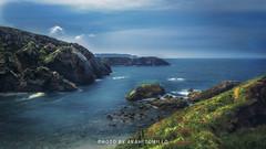 _DSC1692- (anahí tomillo) Tags: nikond5100 sigma 1750f28 naturaleza nature paisaje landscape costa mar asturias spain cantábrico