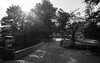 Tierpark 5-2 (FSR Photography) Tags: canon canon400d canondslr sw schwarzweis schwarzweiss spring tierpark trees travel bw blackandwhite blackwhite bäume monochrome monochrom frühling sonne sun fsr fsrphotography