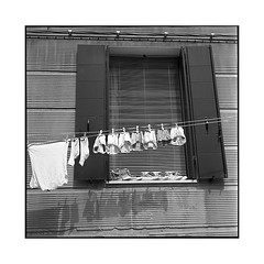 family drying • venice, italy • 2016 (lem's) Tags: minolta autocord family laundry lessive linge famille window fenetre socks chaussettes underwears sous vetements converse shoes chaussures venice venezia venise italia italy italie