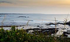 Surf Dream (Jop Hermans Photography) Tags: surf surfphotography jophermans surfing waves nature coastline surfer wave pointbreak swell mothernature seaside portugal alentejo surftrip roadtrip free
