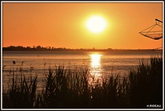 Sunset (Les photos de LN) Tags: sunset estuaire gironde aquitaine garonne berges soirdété nature couleurs roseaux fleuve rivière reflets