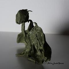 Errol (Yureiko) Tags: yureiko tessellation papierfalten papier art kunst origami paperfolding paper 折り紙 おりがみ shiborigami