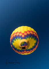 Up Up and Away (pamelalong) Tags: explore fujixt1 18mmf20 balloon colors colorful flight tigardballoonfestival