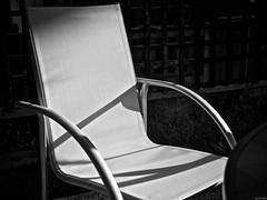 Sitio privilegiado (Luicabe) Tags: airelibre blancoynegro cabello enazamorado exterior jardiìn luicabe luis luz metal monocromaìtico mueble sencillez silla sol yarat1 jardín monocromático zamorarafia zamora rafia