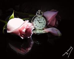 Time for love (ingcuevas) Tags: love romance rose roses pink clock pocketwatch watch reflection black petals flower leaves light dark tiempo romantico colores bodegon composicion flor reloj infinitexposure