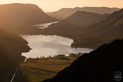 Behind the Pines (tristantinn) Tags: buttermere cumbria lakes lakedistrict england uk britain nature sunset evening landscape crummock water summer 2017 tristantinn