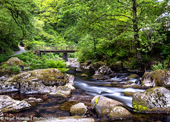 Watersmeet (ihoskins57) Tags: devon eastlynriver trees ©nigelhoskinsphotography landscape watersmeet river northdevondistrict england unitedkingdom gb