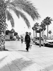 Palm Tree Tree Walking Day Outdoors Full Length Men Architecture City One Person People Adult IPhone7Plus מייאייפון7 Shotoniphone7plus EyeEm Selects מייסטריט מיישחורלבן מייבתגלים (dinalfs) Tags: palmtree tree walking day outdoors fulllength men architecture city oneperson people adult iphone7plus מייאייפון7 shotoniphone7plus eyeemselects מייסטריט מיישחורלבן מייבתגלים