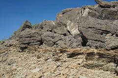 Geology (S_Crews) Tags: california kingstonrange mojavenationaltrail geology igneousrocks shale mudstone