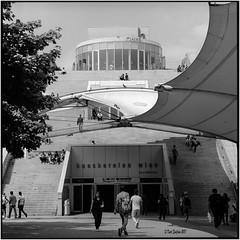 Bücherei Wien_Hasselblad 500C/M (ksadjina) Tags: 12min 150 austria hasselblad500cm kodak100tmax nikonsupercoolscan9000ed rodinal silverfast vienna analog blackwhite film scan