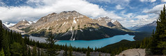 Early Morning over Peyto Lake - Small Size (Robert Moranelli) Tags: banff alberta canada lake peyto canada150 trees mountains rocks view clouds sky