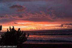Couché de soleil Etang-Salé (BrIs 974) Tags: couchédesoleil etangsalé flickr mer nature sunset sky